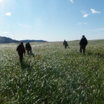 Hike through meadow - Gerhard Wittich photo